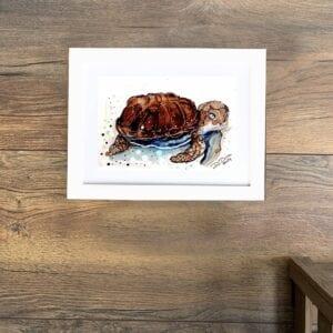 Bizarre turtle45frame