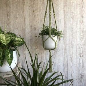 Love  - Macramé Plant Hanger