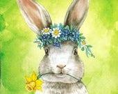 Rabbit & Daffodil