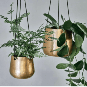 NK: AP7801 Atsu brass planter C
