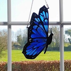 Blue Side Butterfly