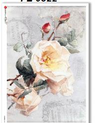 flowers0322