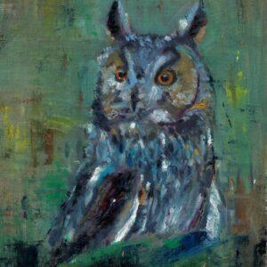KIM owl cropped