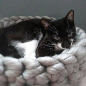 Cat Bed Dove Grey