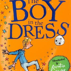 David-Walliams-The-Boy-in-the-Dress.jpg